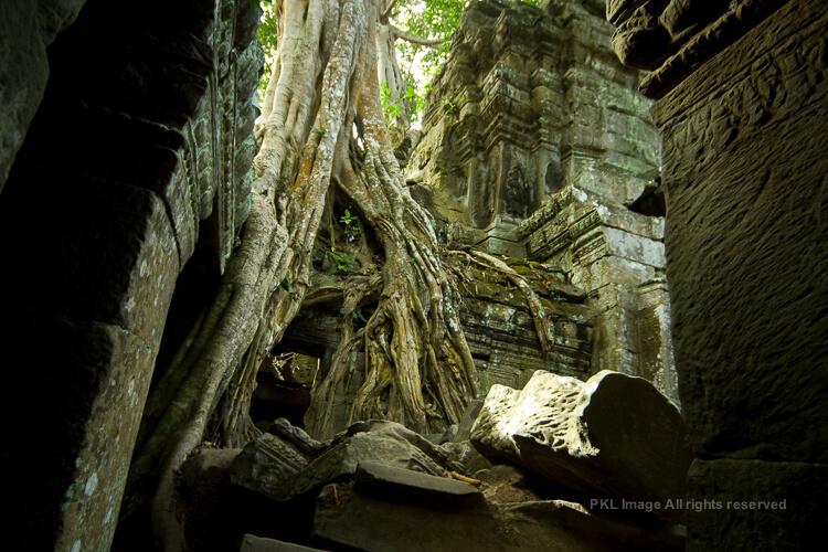 2008 高棉暹罗 老潘