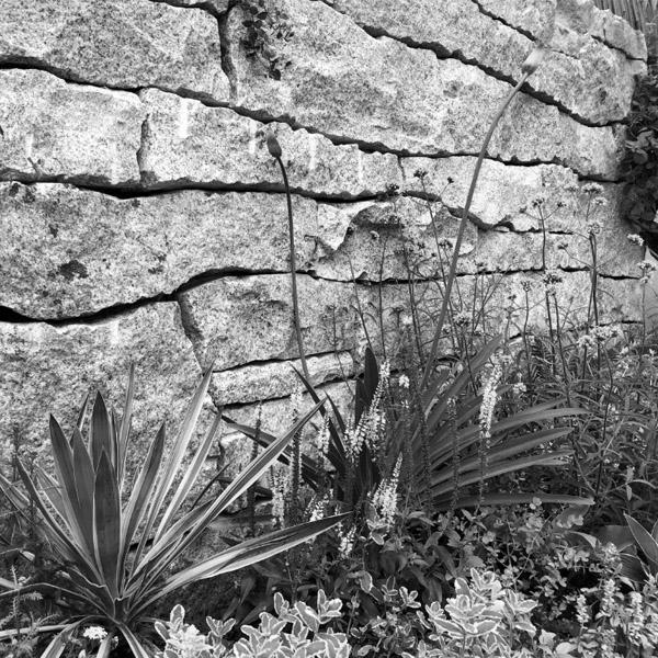 翡翠湖畔庭院